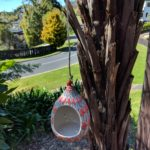 Blue Pottery Bird feeder - Red